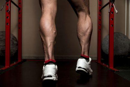 Миниатюра для записи Антигравитационные мышцы