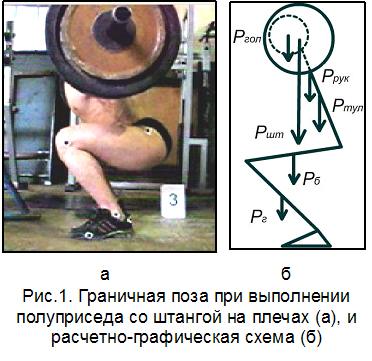 Оценка направленности силовых упражнений