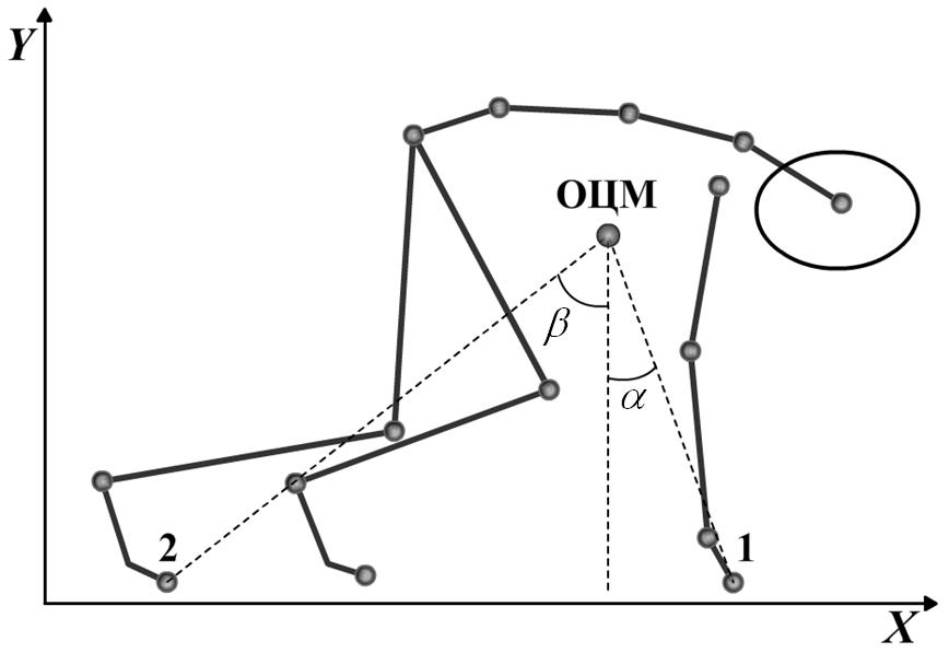 Методика определения устойчивости тела человека