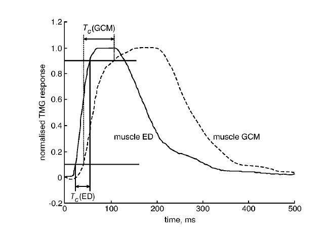 Неинвазивная оценка композиции мышечных волокон