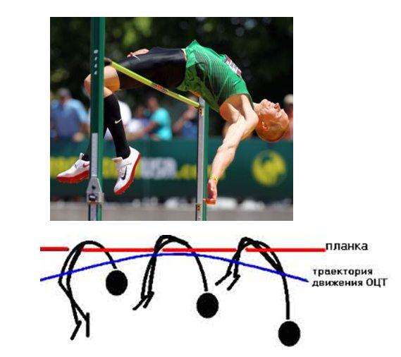 Лекция 1. Предмет и задачи биомеханики