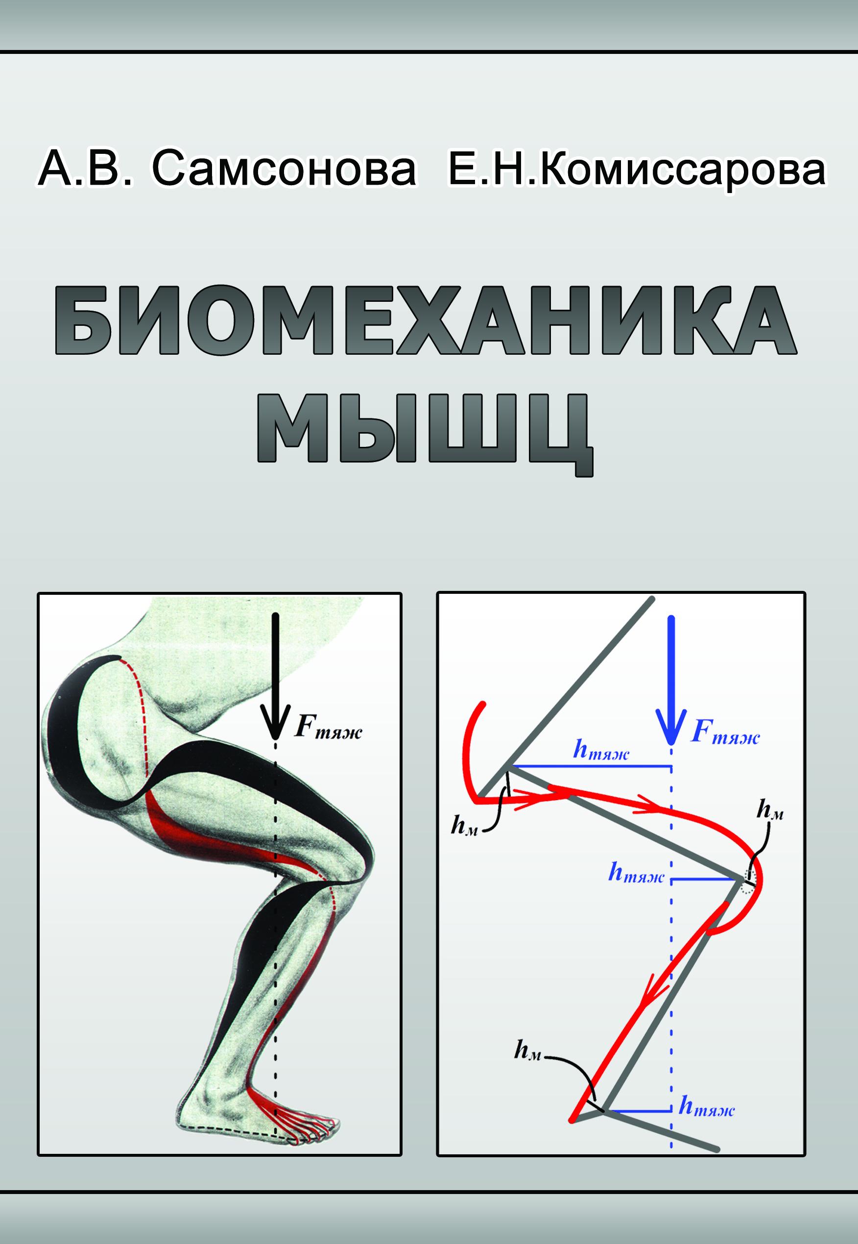 Книга Курысь Биомеханика скачать - картинка 2
