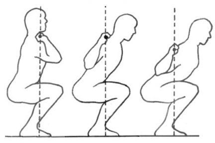 Миниатюра для записи Популярная биомеханика