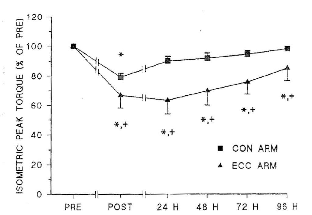 Влияние тренировок, выполняемых в различных режимах сокращения на гипертрофию мышц
