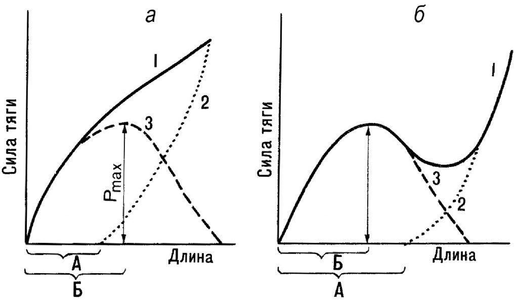 Факторы, определяющие силу и скорость сокращения мышц