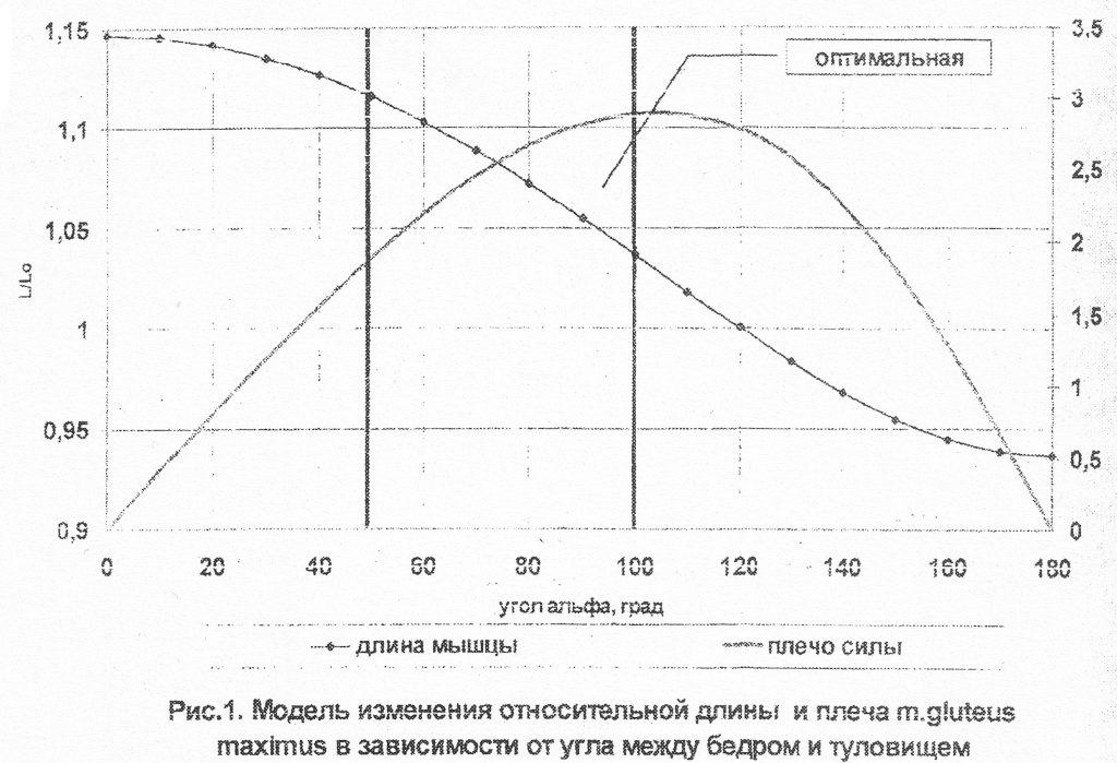 Моделирование двигательных действий в тяжелой атлетике и пауэрлифтинге