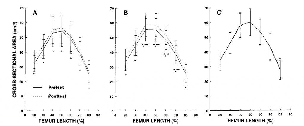 Методы оценки степени гипертрофии скелетных мышц
