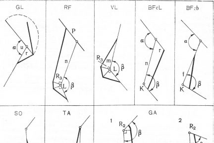 Миниатюра для записи Моторные и сенсорные компоненты биомеханической структуры упражнений