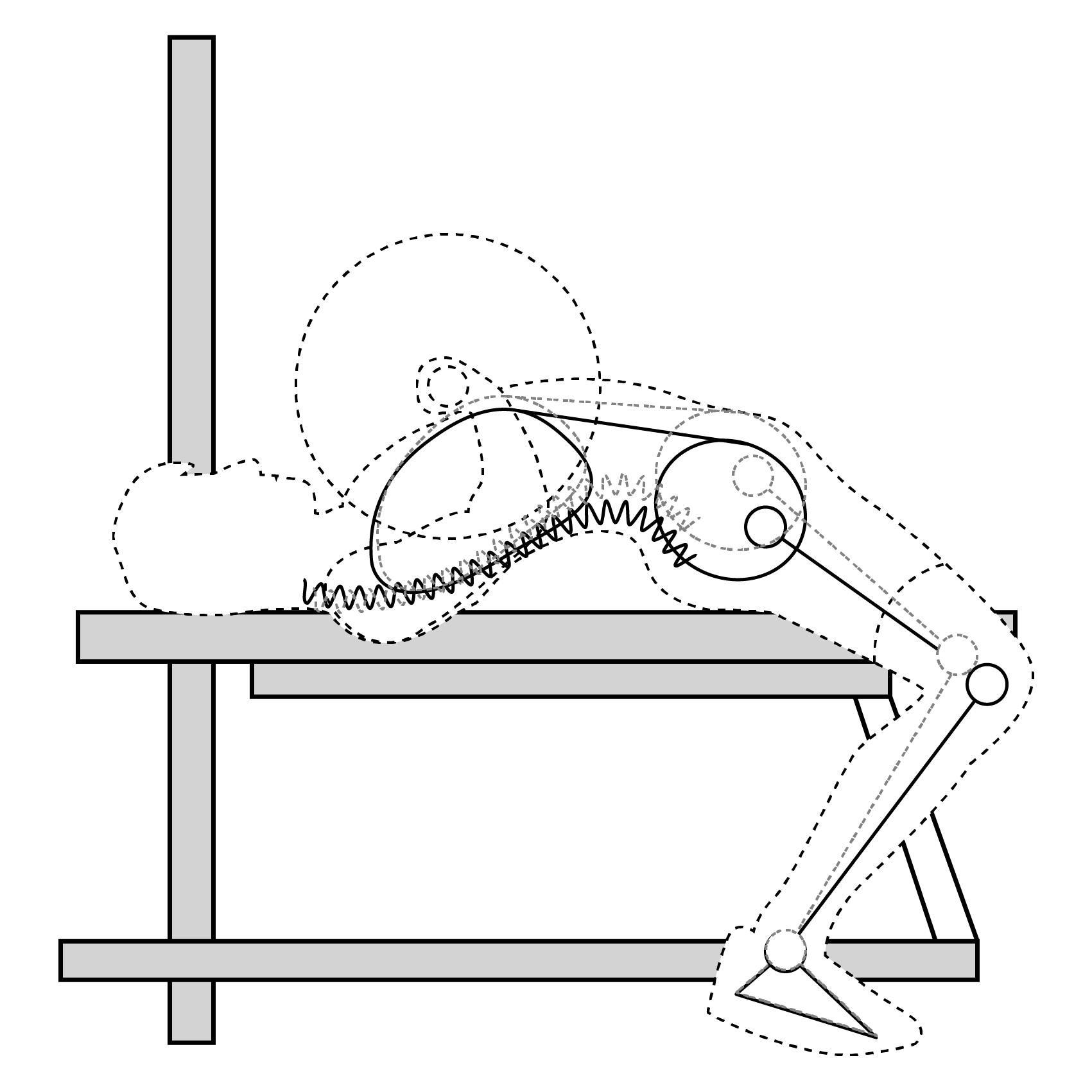 Механизм передачи импульса от ног штанге при выполнении жима штанги лежа