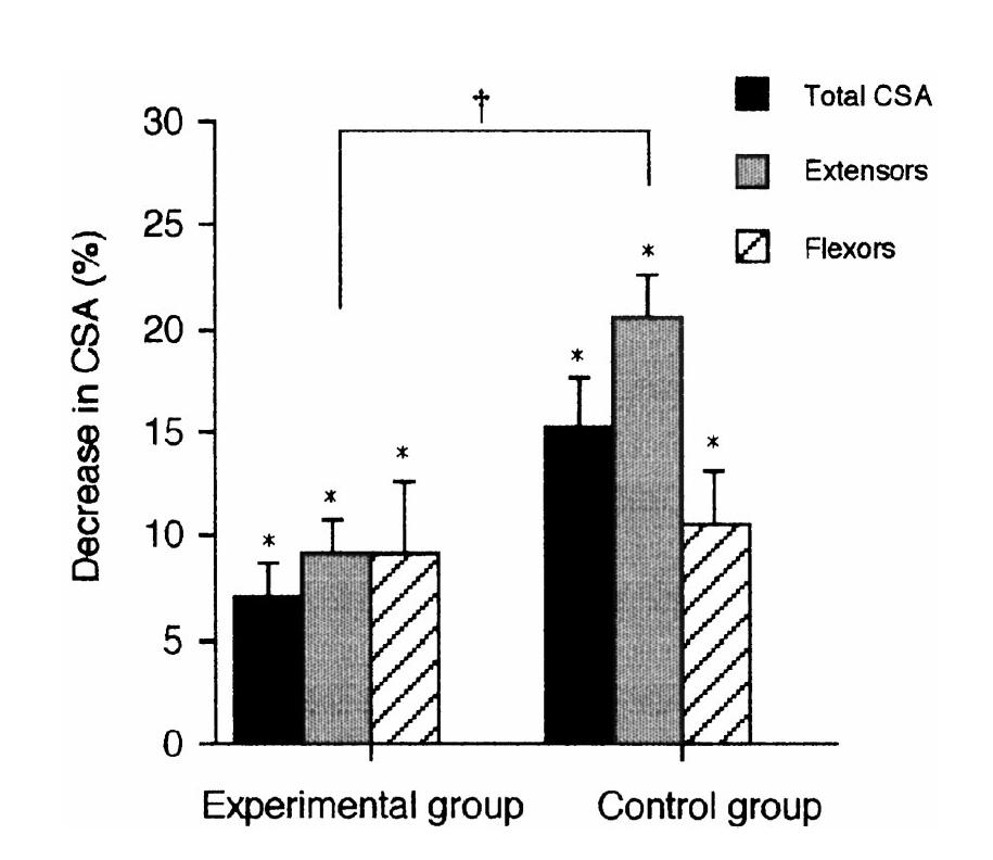 КААTSU-тренировка уменьшает атрофию мышц