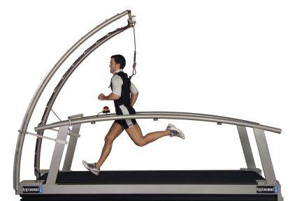 Миниатюра для записи Особенности выполнения циклических упражнений в естественных и лабораторных условиях