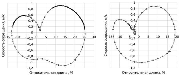 Перспективы использования фазового пространства в информационном обеспечении анализа спортивных движений