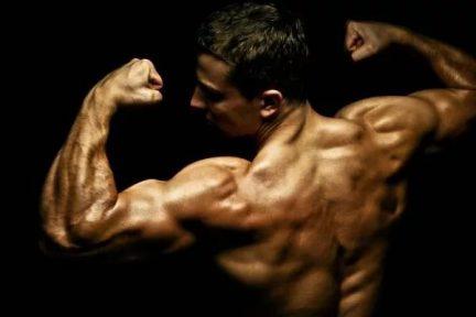 Миниатюра для записи Механизм мышечной гипертрофии и приложения относительно силовой тренировки