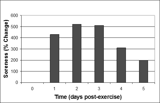 Мышечные боли или почему болят мышцы после тренировок? (запаздывающие болезненные ощущения)