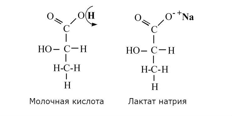 Молочная кислота (лактат) и физические нагрузки