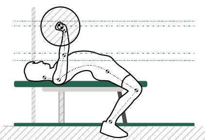 Миниатюра для записи Биомеханика опорно-двигательного аппарата человека