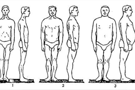 Миниатюра для записи Типы телосложения мужчин по В.В. Бунаку