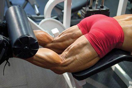 Миниатюра для записи Функциональное значение композиции мышечных волокон мышц задней поверхности бедра: действительно ли это «быстрая» группа мышц?