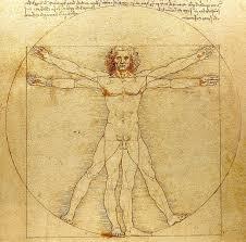 Миниатюра для записи Типы телосложения (соматотипы)